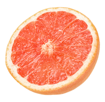 Grapefruit on an isolated transparent background. by PRUSSIAART