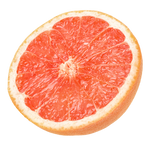 Grapefruit on an isolated transparent background.