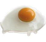 Egg white and yolk.