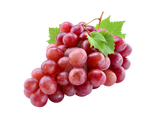 Red grapes on a transparent background. by PRUSSIAART