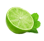 Lime and mint on a transparent background. by PRUSSIAART