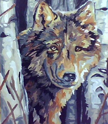 Lone Wolf by xpinkwordvomitx