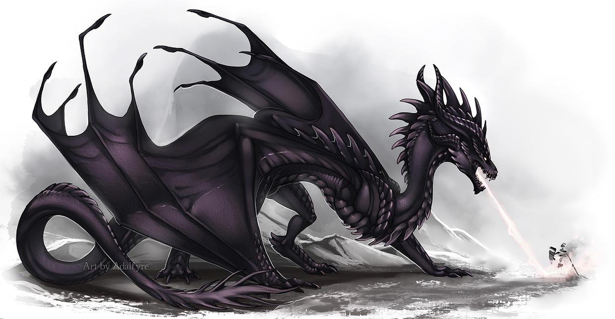 Black Wyvern by Adalfyre on DeviantArt