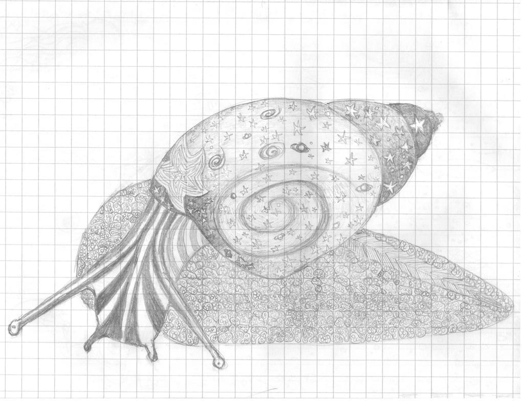 Doodle Snail by bupple