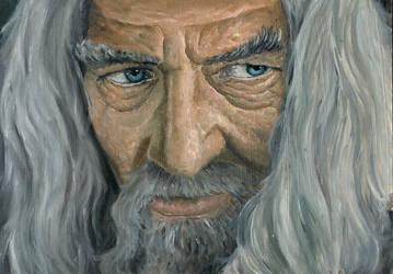 Gandalf the Grey [Oils] by GiovaBellofatto