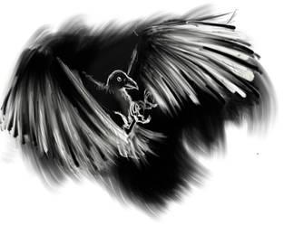 Raven by GaraKan