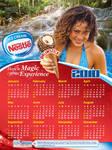 Nestle 2010 Calendar