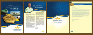 Carreras Annual Report by owdesigns