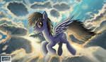 Danger Shadow's flight (Request)