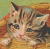 Loveable Kitten Icon