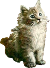 Cute Kitty Icon big (100x137) by linux-rules