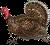Too Fast Too Turkey Icon