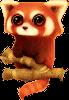 Red panda Icon big