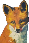 Fox Icon ultrabig by linux-rules