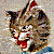 Angry Cat Icon by linux-rules