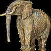 Fun Elephant Icon big