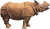 Rhinoceros unicornis (Indian Rhino) Icon
