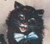 Good fortune Cat Icon big