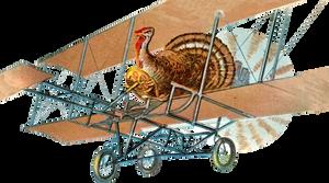Turkey Pilot (stock)