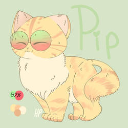Pip redesign