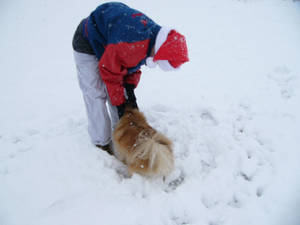 Snow Dat Feb 11 2010