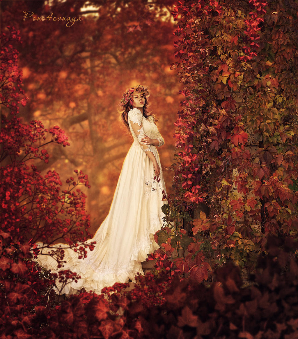 in autumn colors by pono4evnaya