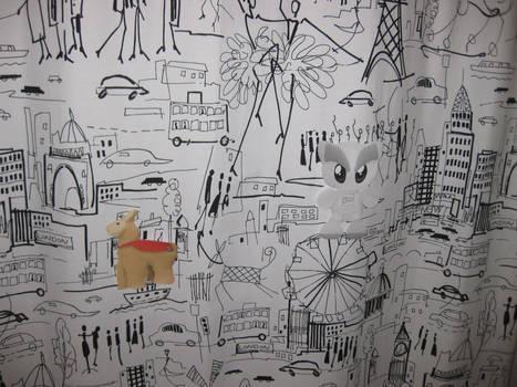 Shower Curtain Edition