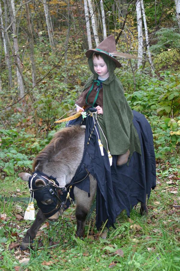 http://fc02.deviantart.com/fs20/i/2007/229/4/6/Robin_Hood_by_Unicornsister.jpg