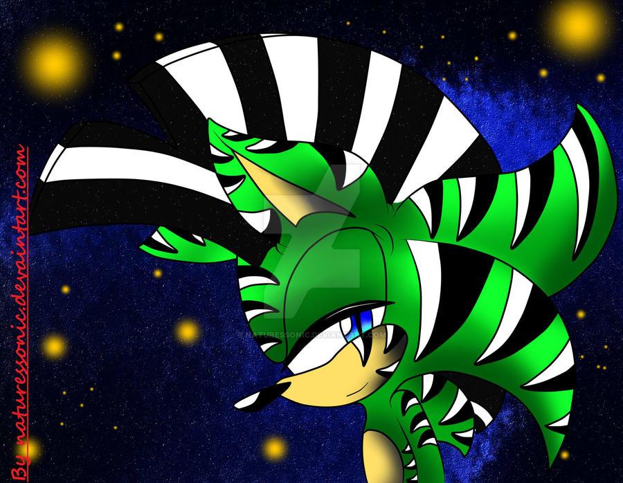 Zebra gift :Digital: by naturessonic