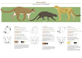 Comparative Anatomy for Artists: Cougar Line