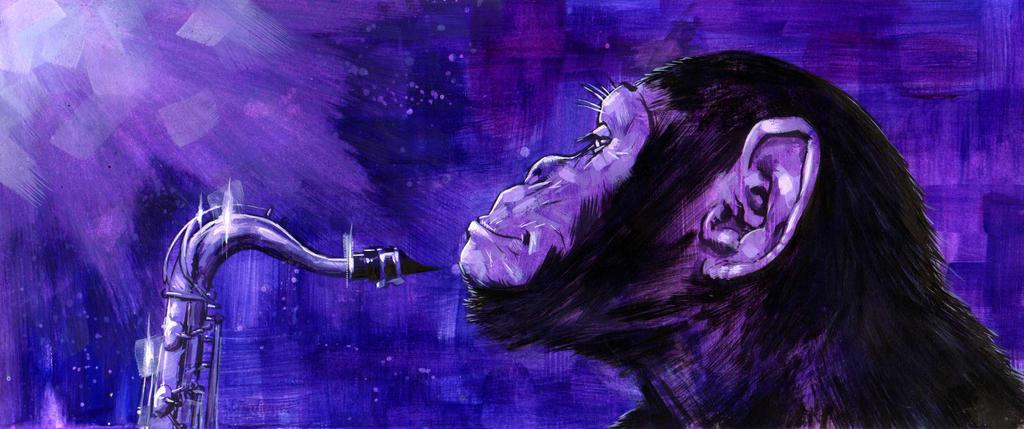chimp jazz