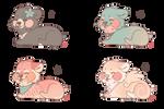 Cutie Bear Designs