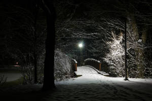 Snow-Covered Foot Bridge by dseomn