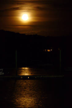 Moon Over the Harbor