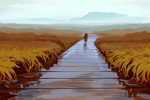 A flooded path