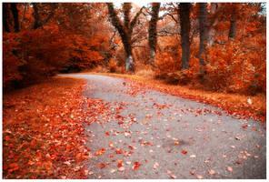 Autumn has come I by DarkMetaphor