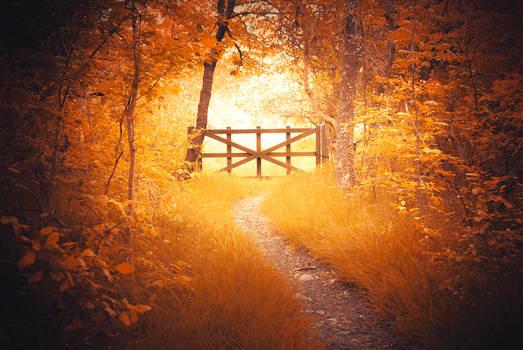 Autumn dream -alternative-