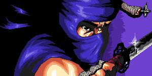 ninja gaiden by elosa