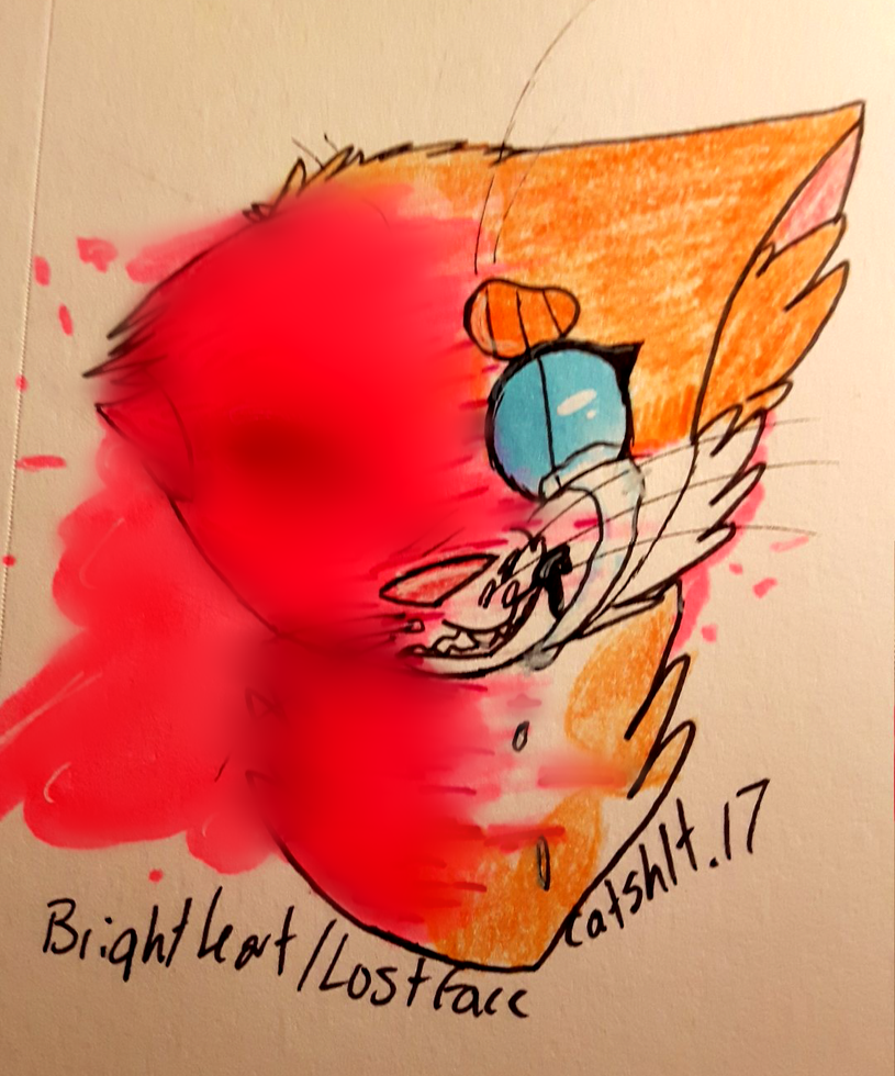 lostface by catshlt