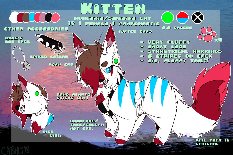 Kitten Ref 2018 by catshlt