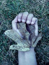 Holding nature.