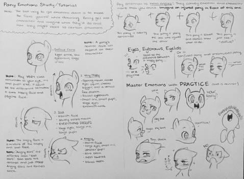 Pony Emotions Tips/Study/Tutorial