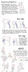 Pony Anatomy Tips/Study/Tutorial by kianamai
