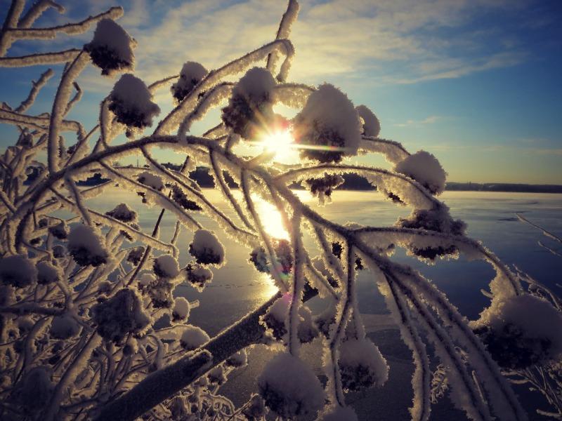My sun by PurpleScarecrow