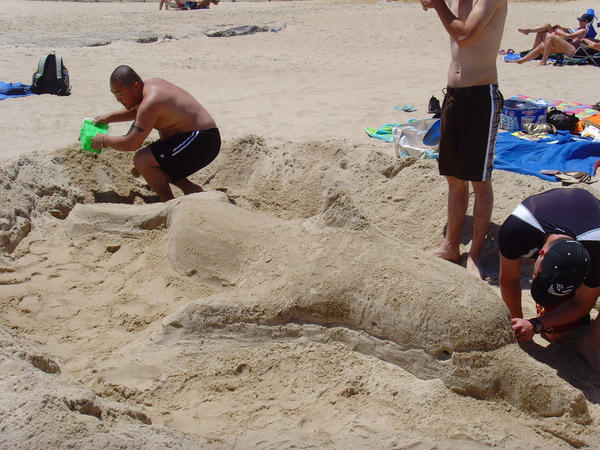 Sand Dolphin 3 -in progress 2- by Snatcher2047