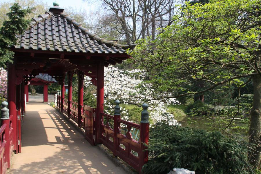 Asian Garden Bridge 106
