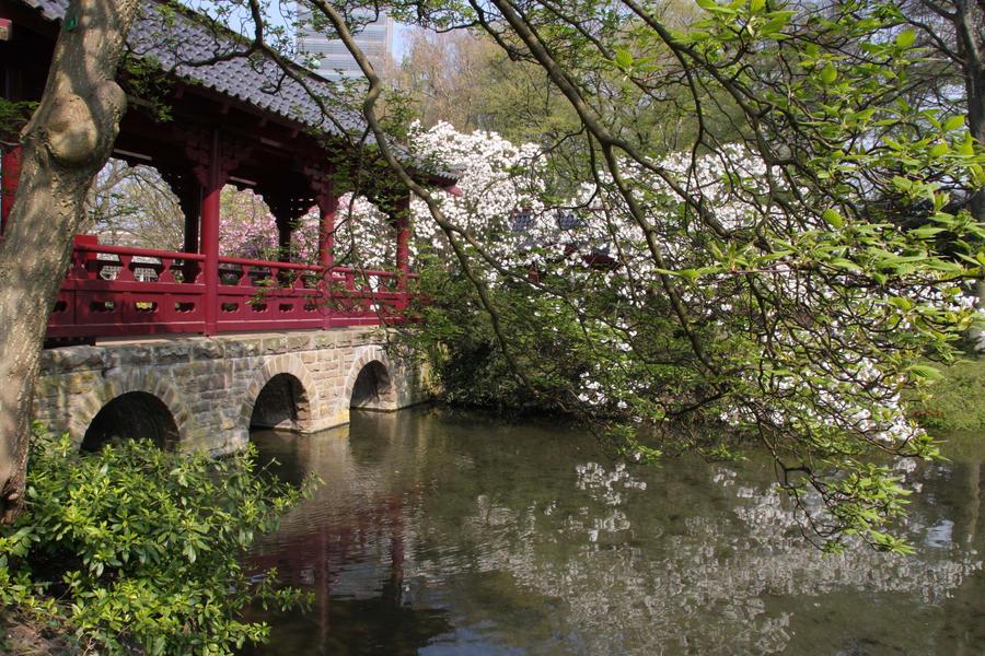 Asian Garden Bridge 27