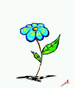 wild flower by eniale27