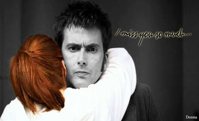 Donna and Doctor by Francy3192