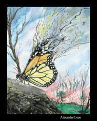 Ind Stu2 - Butterfly